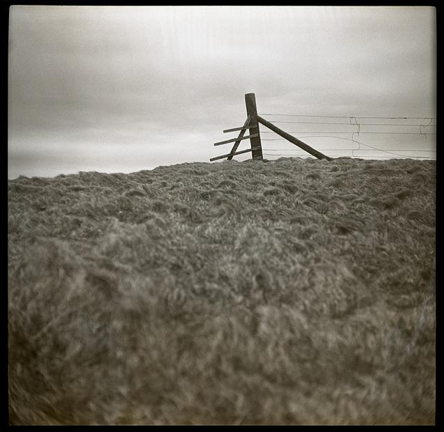 Shetland series 3
