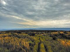 Sky, sea, and grasslands