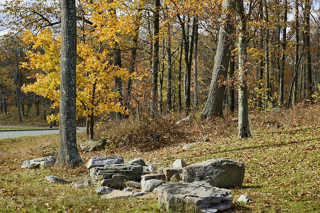 Boulders – High Point State Park, Sussex County, New Jersey