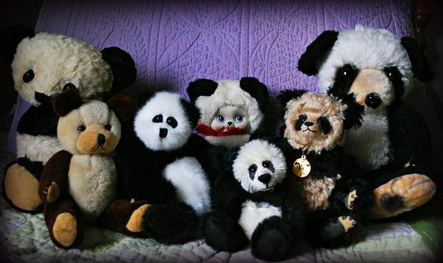 1-10 Project: 7 Toy Pandas
