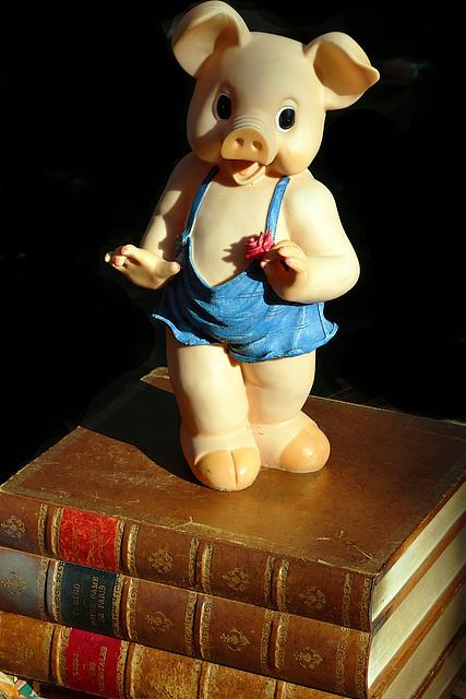 En voilà une qui aime la lecture , et pas des histoires cochonnes .