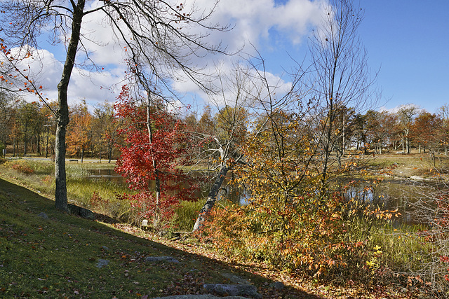 A Corner of Lake Marcia – High Point State Park, Sussex County, New Jersey
