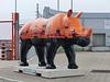After Go! Rhinos_008 - 20 September 2014