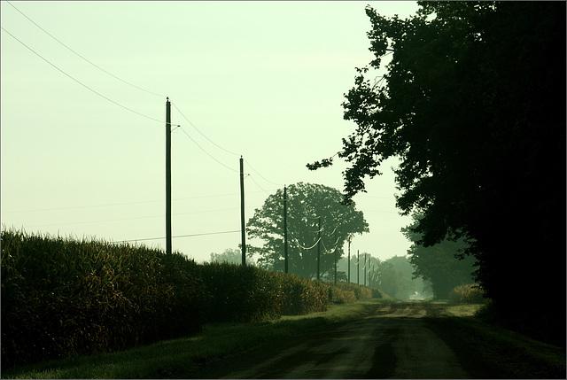 Saginaw Highway