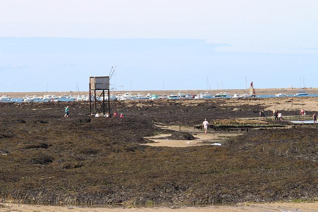la Pré près de la Plaine sur Mer