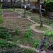 Doynton St gardens
