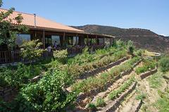 restaurant and terraced garden