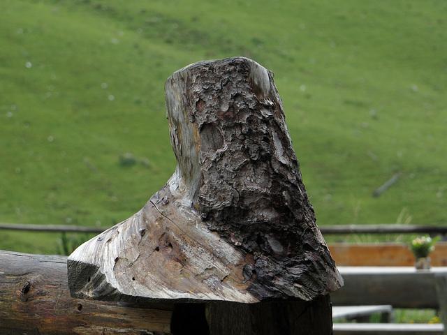 Baum-Schnitzerei
