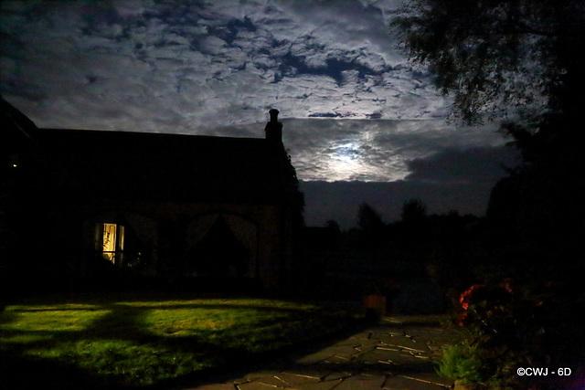 Moonlit Skies