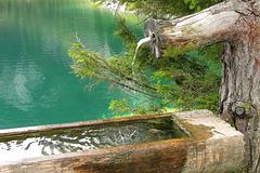 Fontaine, Gosausee (Autriche)