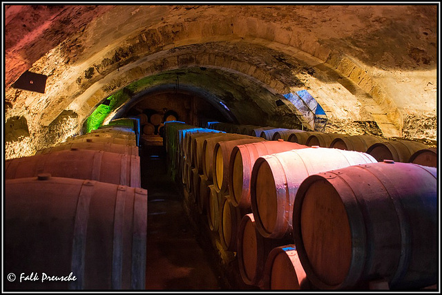 Der Weinkeller in der Chartreuse de Bonpas