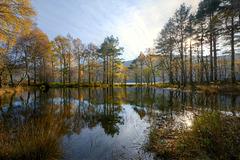 Ennerdale in Autumn