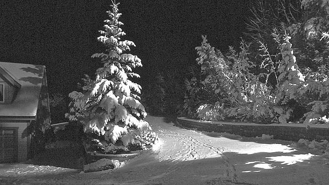 Lots of snow today. Nov. 26