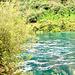 Waikato River 4