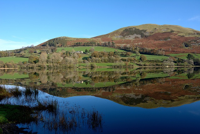 Loweswater calm