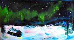 Sub-arctic night
