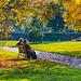 Herbstlicht - The Light of Fall (HBM)