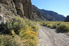 Hot Creek Canyon