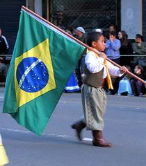 Brazila flago