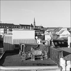 Dachgarten | roof garden