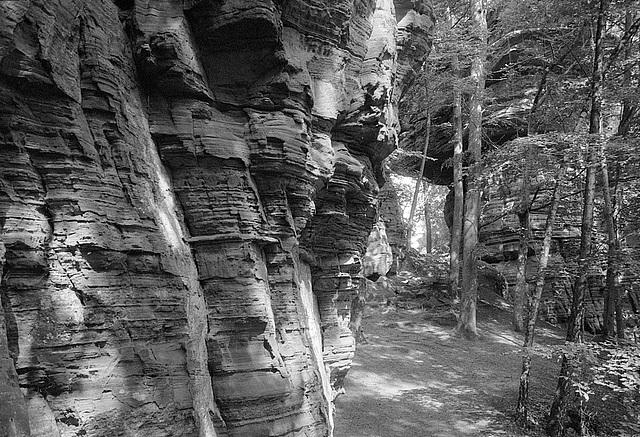 Pfalz Rocks IV
