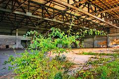 Schwerin-Görries, alter Hangar