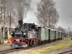 99 1574-5 mit einem Personenzug im Bahnhof Mügeln