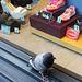 Pigeon toes - 24.6.2014