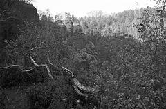 Sachsen Rocks V