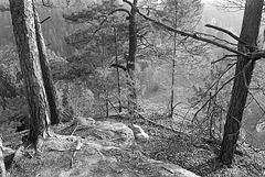 Sachsen Rocks VI