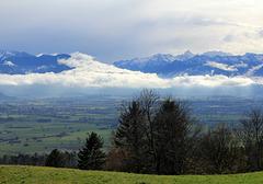 Morgennebel im Tal  (Schweiz)