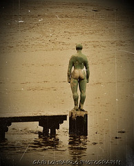 aspettando l'alta marea