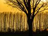 Sonnenuntergang bei Redentin