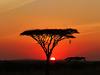 Tanzania. Serengeti sunset. 201208