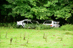 Laudonie 2014 – French cars
