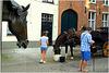 Fresque equine