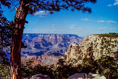 South Rim Vista, Grand Canyon