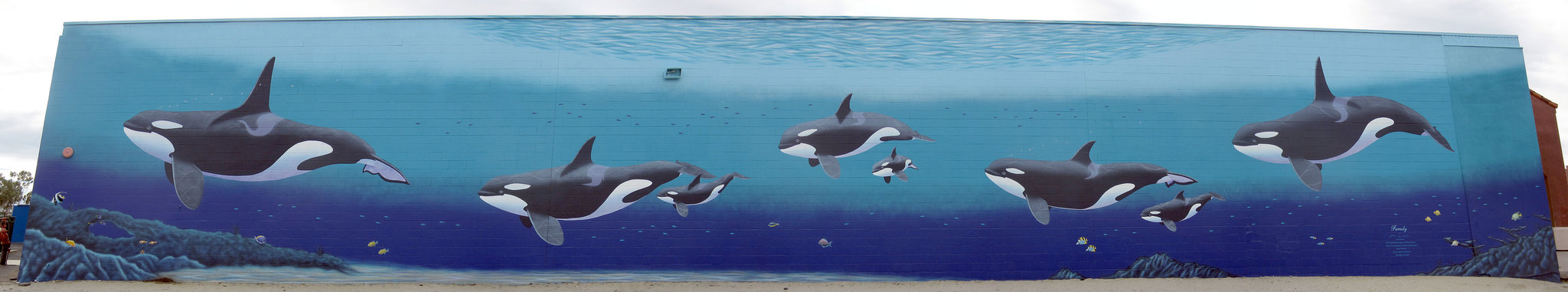 "Orca Mural ""Family"" (2)"