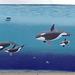 "Orca Mural ""Family"" (2)"