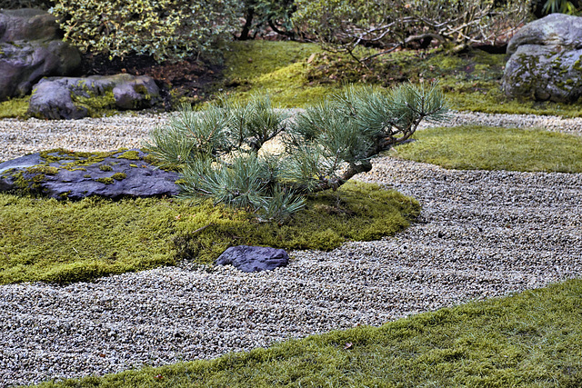 ipernity: The Zen Garden – Japanese Tea Garden, Golden Gate Park ...