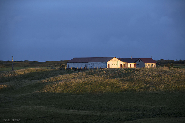Icelandic Farm in the Sunset