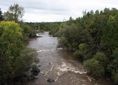 the river/la rivière