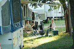 Campground Grass