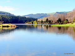 Lake Whakamaru