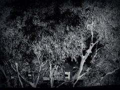 L'ambiguïté en manteau noir, la nuit fait peur, la nuit rassure