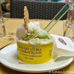 San Gimignano in Tuscany 052614-003