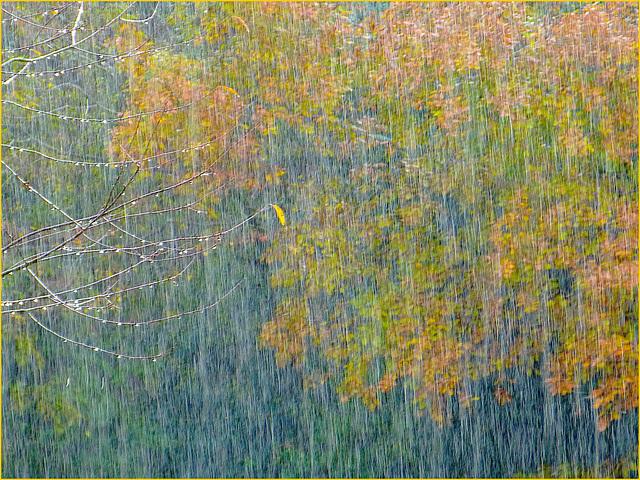 Météo du jour 3: la pluie danse avec le soleil