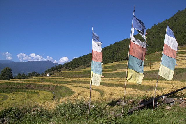 Prayer flags, Shengana