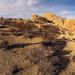Near Jumbo Rocks (154809)