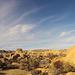 Jumbo Rocks Campground (154849)